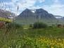 Fjords & Farms